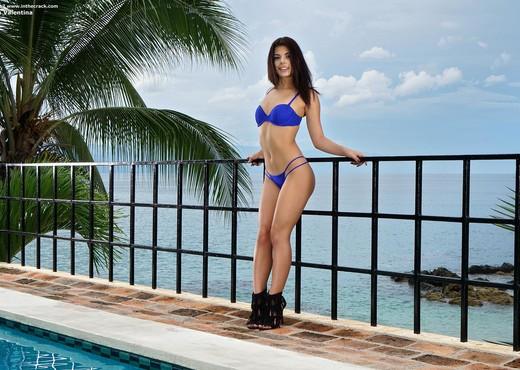 Gina Valentina - Wet pool pussy - InTheCrack - Pornstars Nude Pics