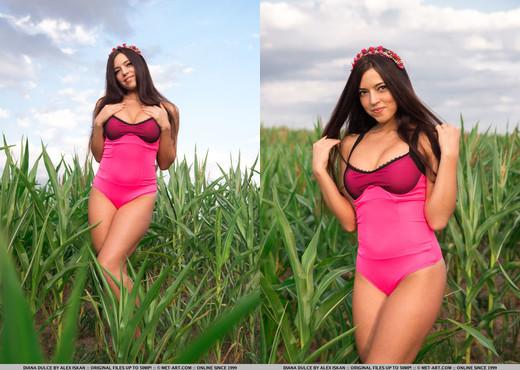 Diana Dulce - Ridee - MetArt - Solo Nude Pics