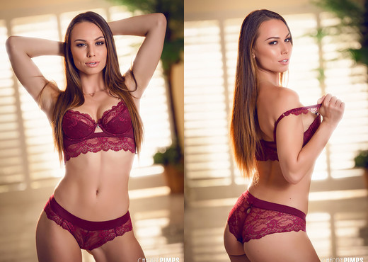 Aidra Fox Slowly Slides Down Her Lace Lingerie For You - Solo Image Gallery