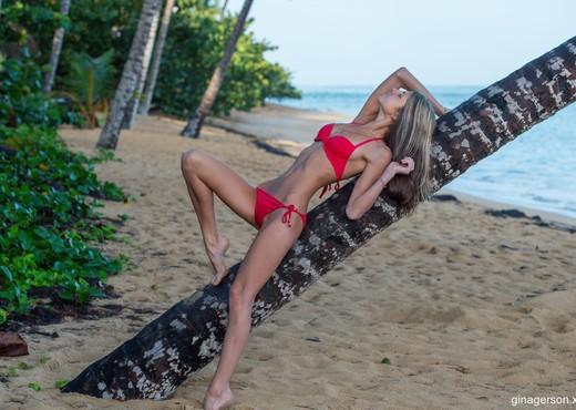 Gina Gerson - Red Bikini - Solo Image Gallery