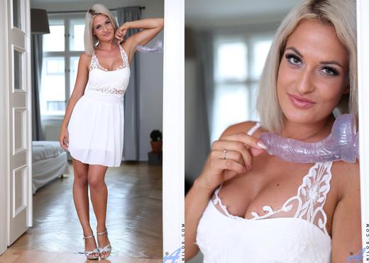 Nicole Vice - Dildo Play - Anilos - MILF Porn Gallery