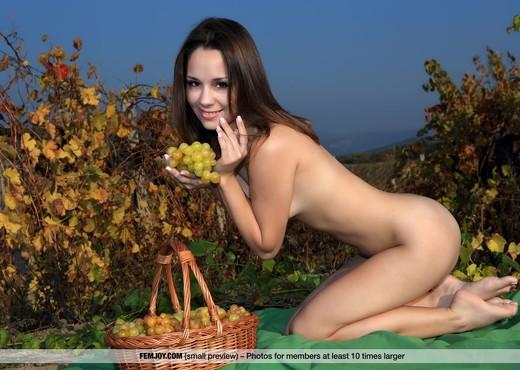 Enjoy - Arina F. - Femjoy - Solo Nude Pics