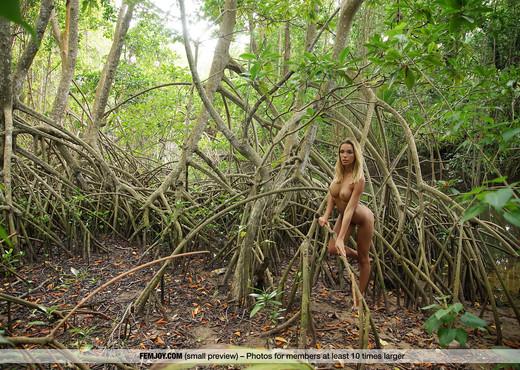 Jungle - Amber A. - Femjoy - Solo TGP