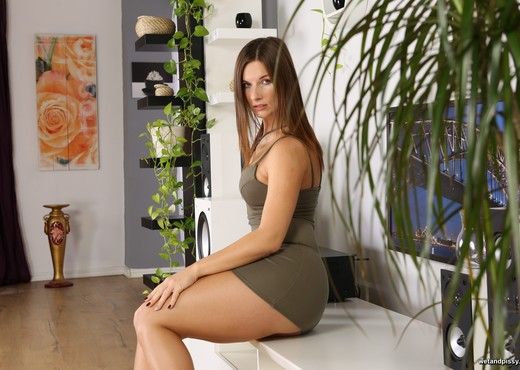 Jenifer Jane pees over the floor in the lounge - Toys HD Gallery