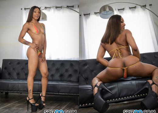 Sizi Sev Roommate Banger 4k - Spizoo - Hardcore HD Gallery