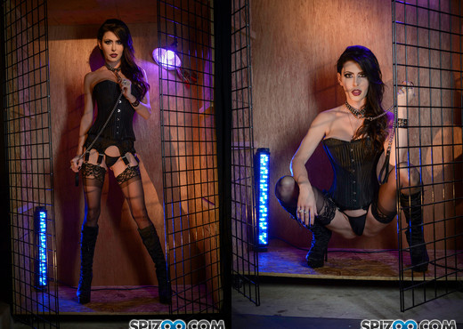 Jessica Jaymes Got Caged 4k - Spizoo - Hardcore Picture Gallery