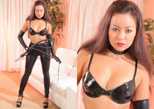 Petra So - Petra Cat - Strictly Glamour - Solo Image Gallery