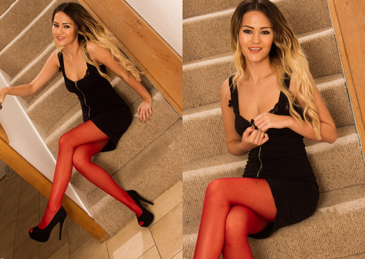 Daisy Rose - Rouge - More Than Nylons - Solo Sexy Photo Gallery