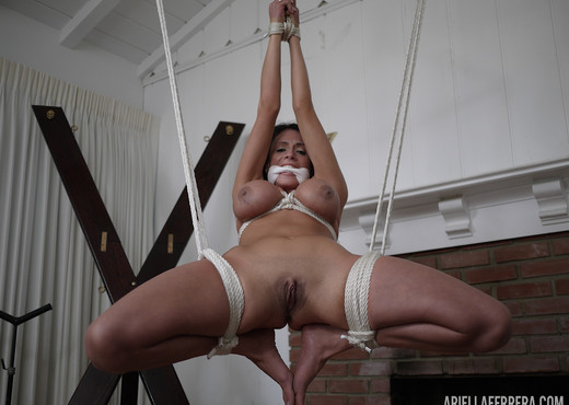 Ariella Ferrera in Suspended and Played With - Pornstars Porn Gallery