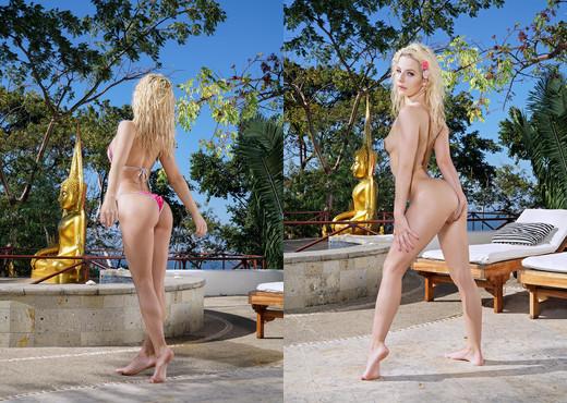 Bella Rose - InTheCrack - Pornstars Picture Gallery