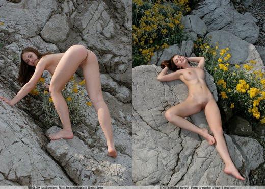 Wild Flowers - Olena - Femjoy - Solo Sexy Gallery
