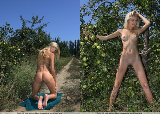 Apple Season - Anja C. - Solo Sexy Gallery
