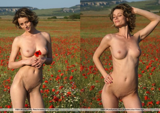 Poppies - Abby - Femjoy - Solo Sexy Photo Gallery
