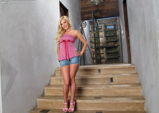 Aaliyah Love - InTheCrack - Toys Nude Gallery