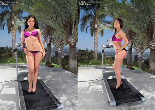 Vicki Chase - InTheCrack - Asian Nude Gallery