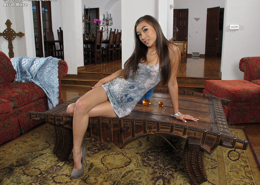 Arial Rose - InTheCrack - Toys Hot Gallery