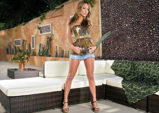 Natalia Rossi - InTheCrack - Pornstars Nude Gallery