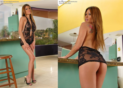 Charmane Star - InTheCrack - Toys Image Gallery