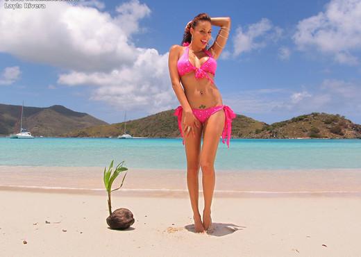 Layla Rivera - InTheCrack - Pornstars Image Gallery