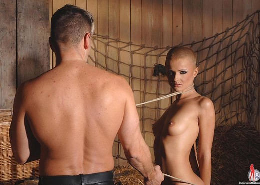 C.J. - House of Taboo - BDSM TGP