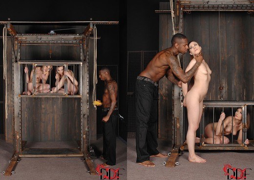 Daryl & Johane Johansson - House of Taboo - BDSM Hot Gallery