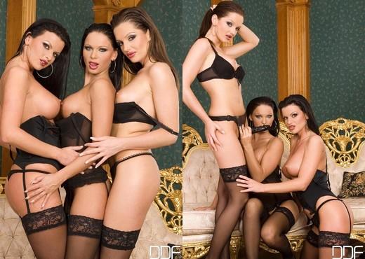 Cristina Bella, Judy Nero & Sandra Shine - Lesbian Porn Gallery